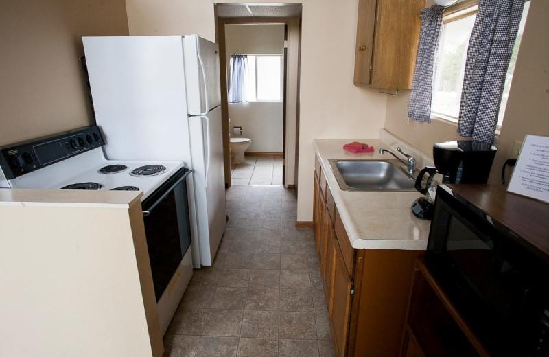 Cabin kitchen at Indian Trails Resort.