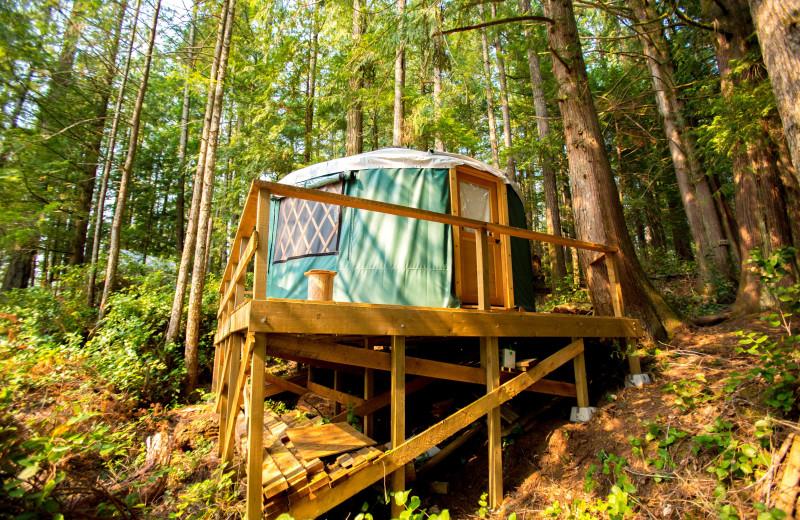 Yurt exterior at Wilderness Resort & Retreat.