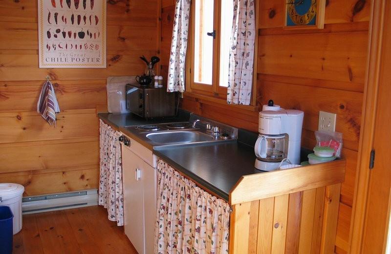 Cabin kitchen at Windermere Creek Bed & Breakfast Cabins.