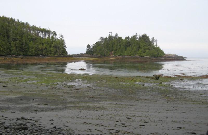 The beach at The Cabins at Terrace Beach.
