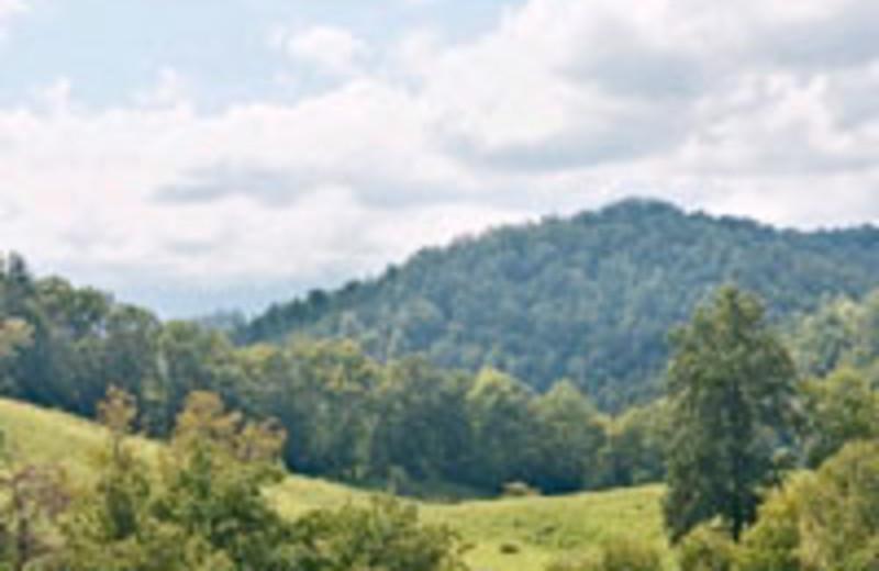 Heartland Rentals Gatlinburg Tn Resort Reviews