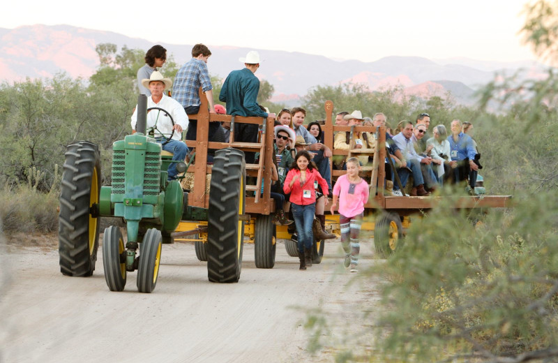 Wagon ride at Rancho De Los Caballeros.