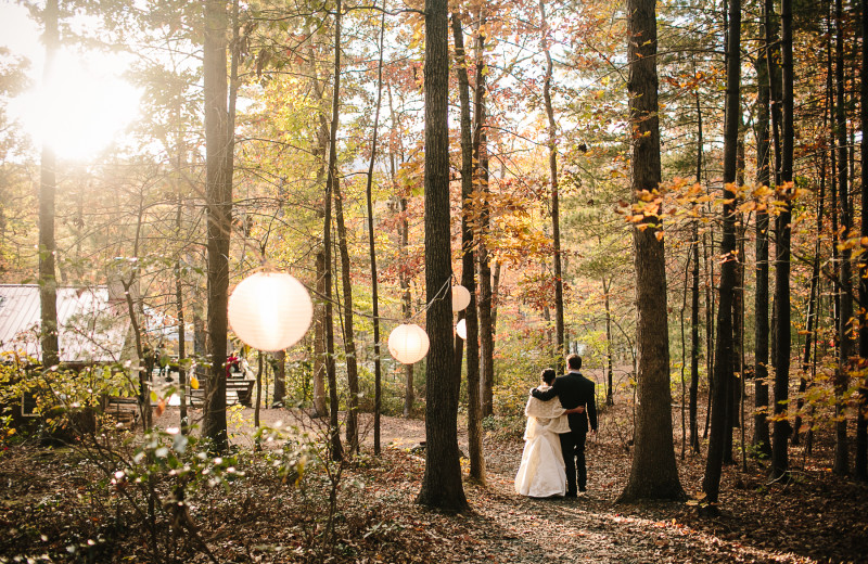 A stroll through the forest at Montfair Resort Farm