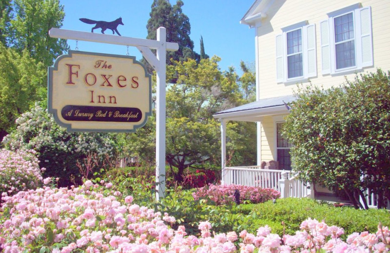 Exterior view of Foxes Bed and Breakfast.
