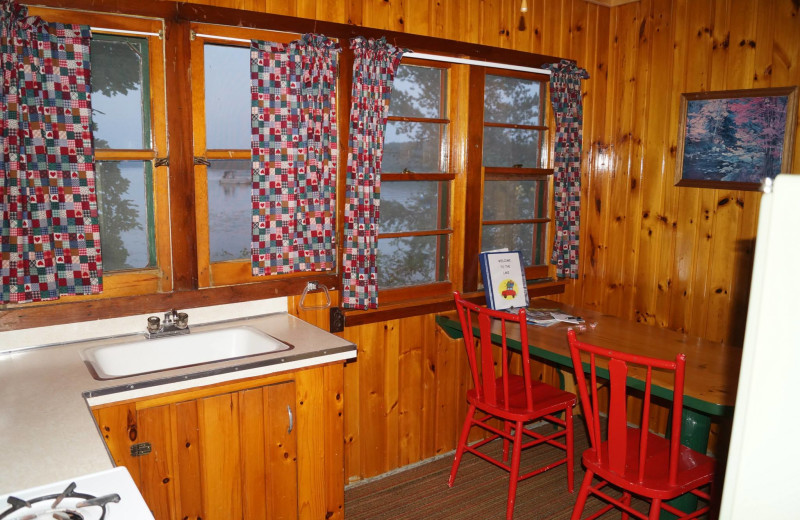 Cabin kitchen at Anderson's Starlight Bay Resort.