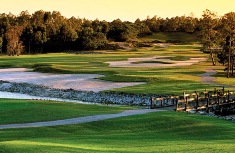 Golf course near Naples Florida Vacation Homes.