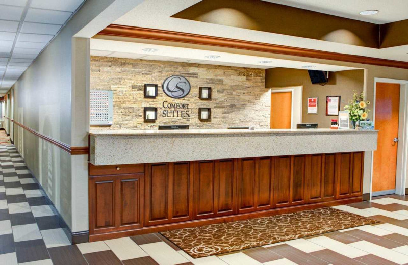 Check in desk at Comfort Suites Stevensville - St. Joseph.