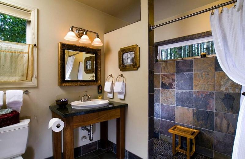 Cabin bedroom at WildSpring Guest Habitat.