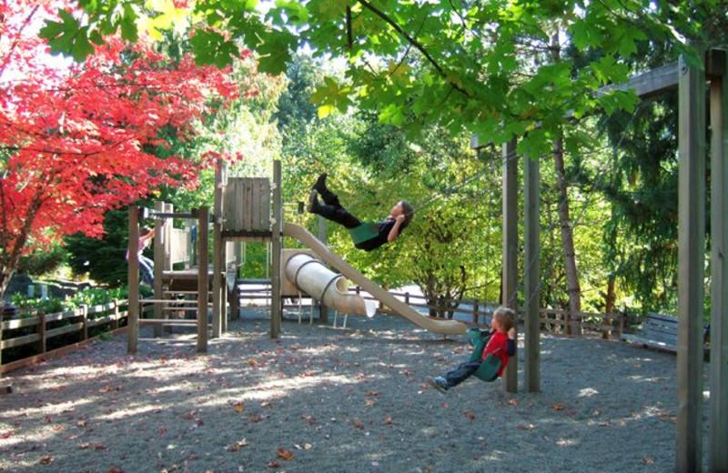 Playground at Whispering Woods Resort.