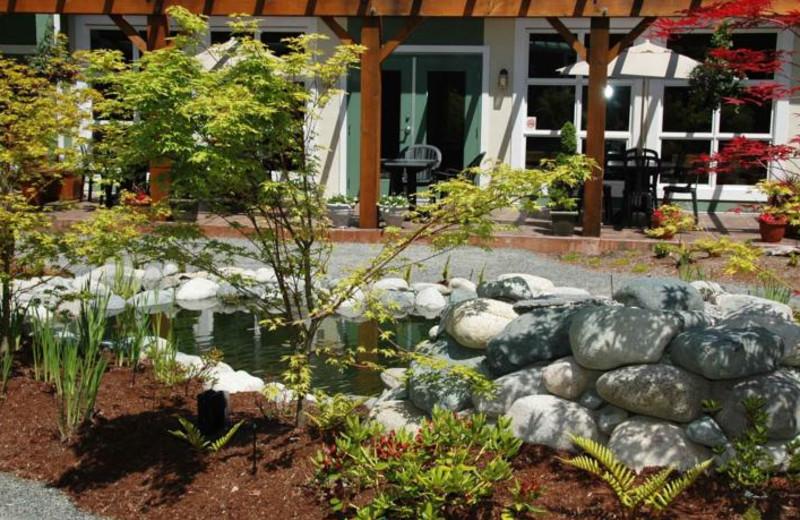Pond at Honeymoon Bay Lodge & Retreat.