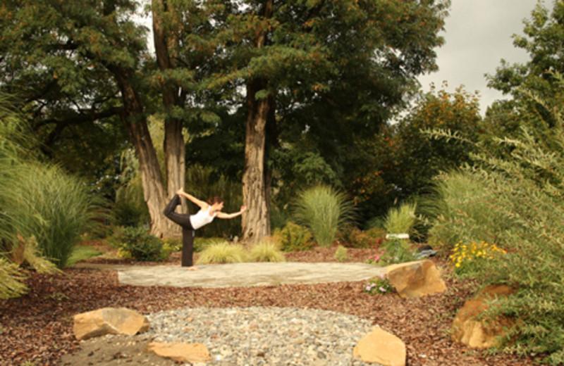 Outdoor Yoga at  Carson Ridge Cabins