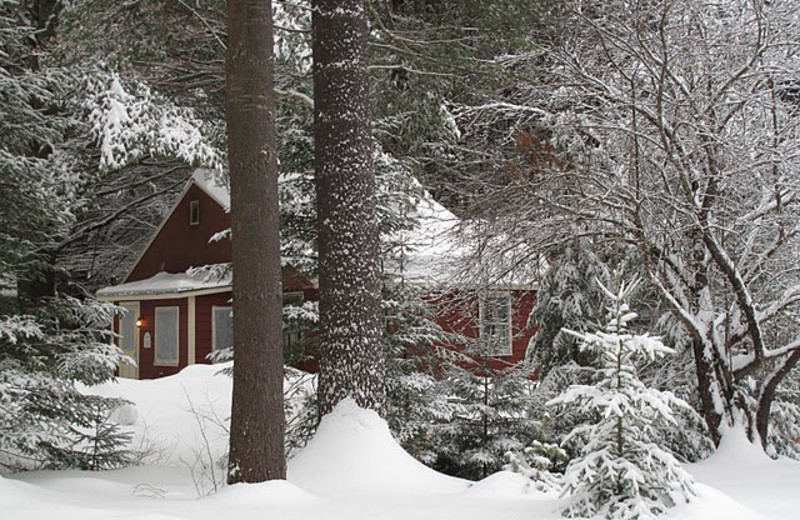 Cottage at Lapland Lake Nordic Vacation Center