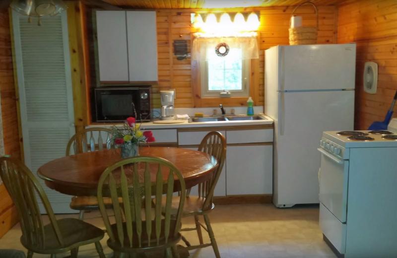 Cabin kitchen at Evans Lake Resort.