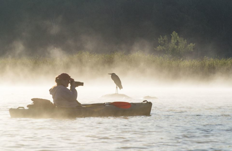 Wilderness waterways around Jackson's Lodge abound with photogenic scenes and wildlife.