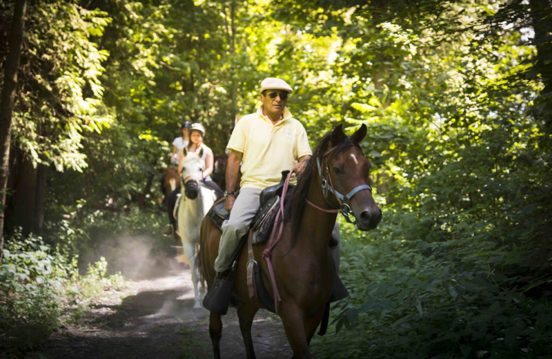 Horseback riding at Elmhirst's Resort.