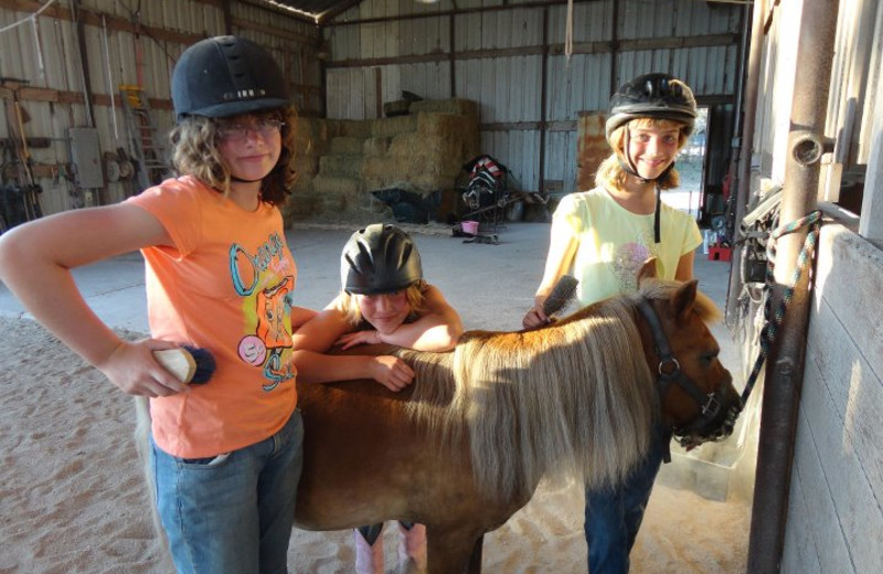 Caring for Horses at Sugar & Spice Ranch