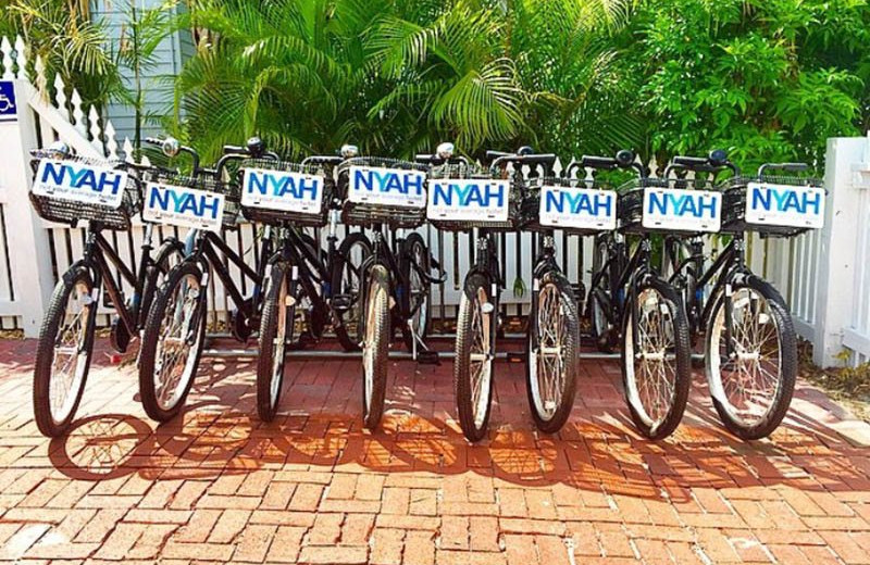 Bikes at NYAH Key West.