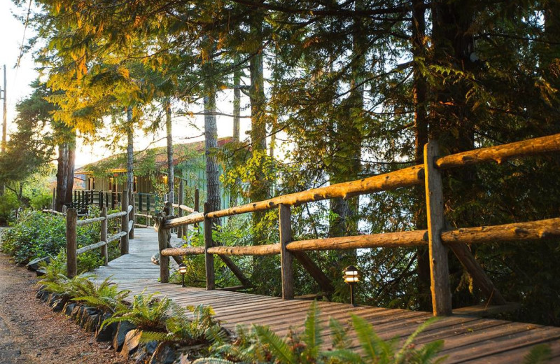 Walking path at April Point Lodge and Fishing Resort.
