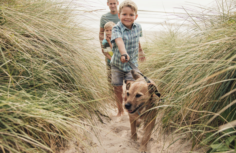 Ryson Vacation Rentals offers over 50 pet friendly vacation homes, and Galveston beaches are pet friendly, so find a pet friendly home & bring the family pet. Browse our site or speak with one of our Vacation Planners to find your perfect pet friendly vacation home.