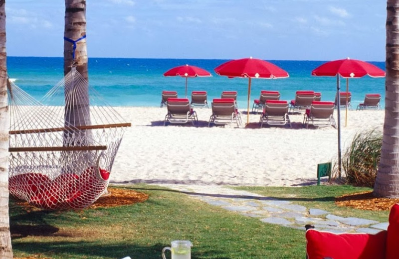 The beach at Acqualina A Rosewood Resort.