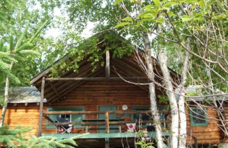 Pickerel Bay Cabin at Lac La Ronge Lodge