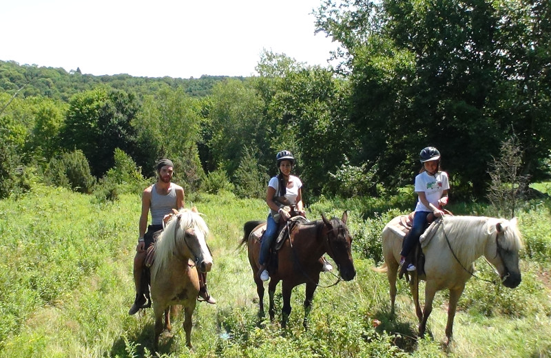 Horse back riding at Villa Roma Resort.