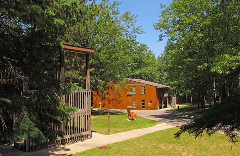 Cabins at UAW Black Lake.