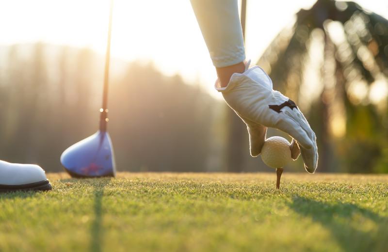 Golf near Starkey Properties.