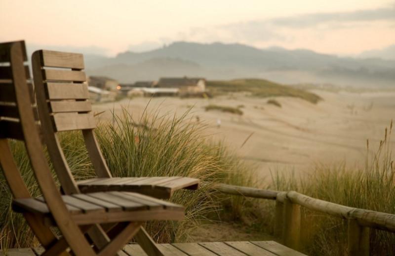 Beach at Inn at Cape Kiwanda.