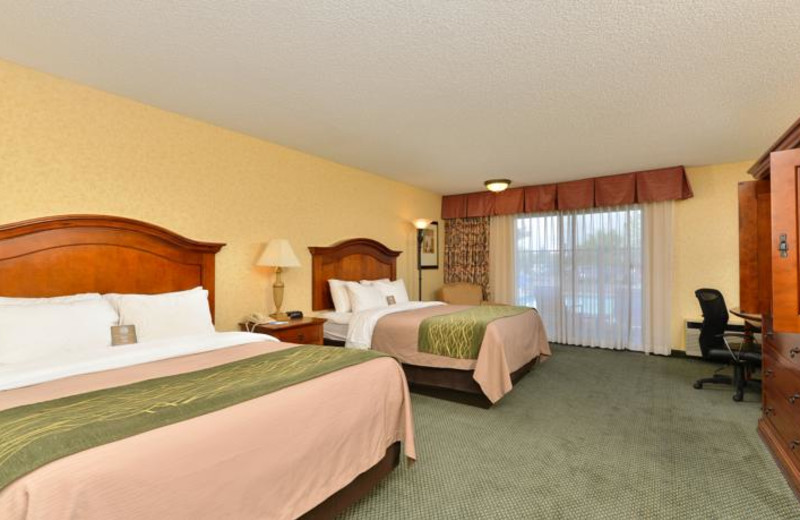 Guest room at Comfort Inn Big Sky.