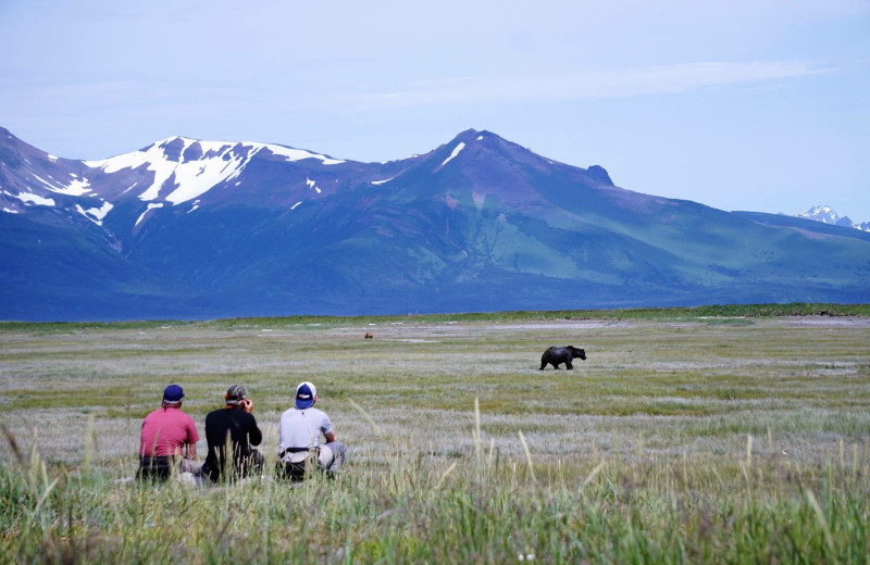Hiking at Alaska Trophy Adventures Lodge.