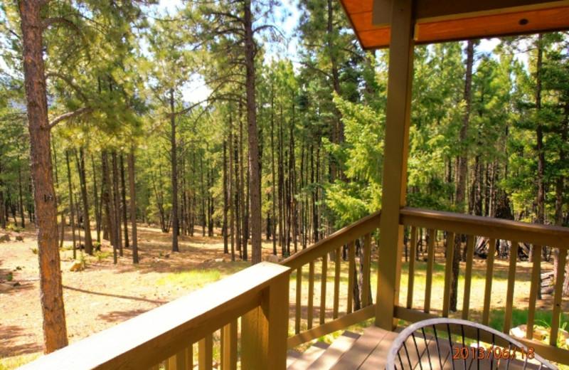 Rental deck view at Resort Properties of Angel Fire.