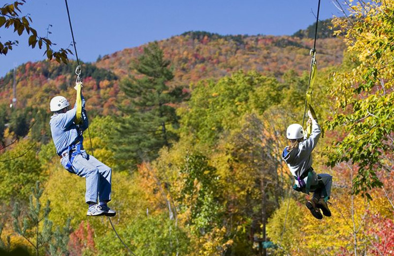 Zip line at Loon Reservation Service.