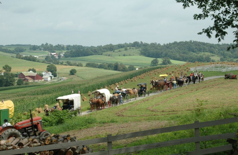 Amish carriages at Guggisberg Swiss Inn/Amish Country Riding Stables.
