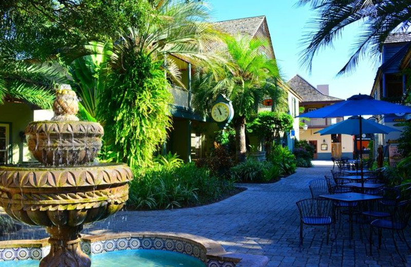 Beautiful Grounds at The Saint Augustine Beach House