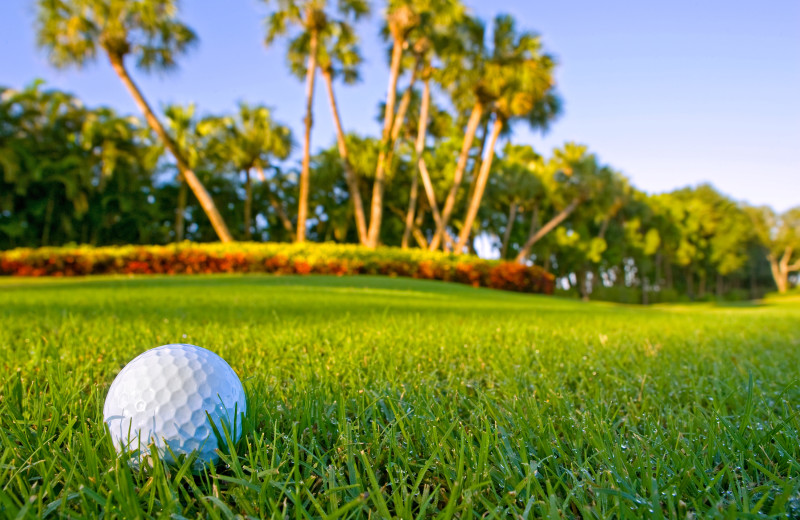 Golf near Boca Ciega Resort.