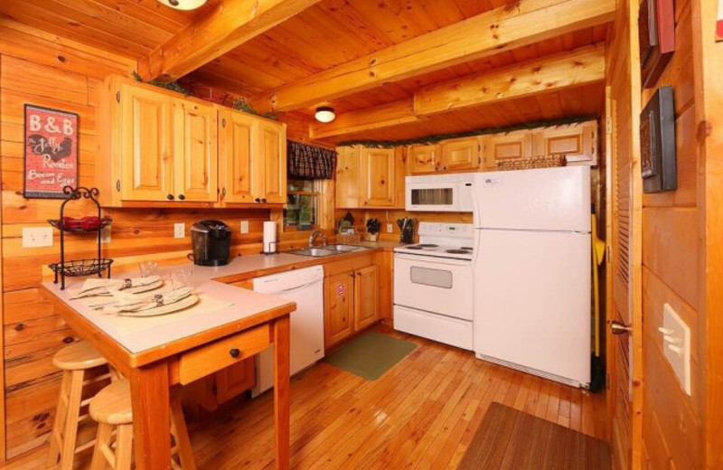 Cabin kitchen at Little Valley Mountain Resort.