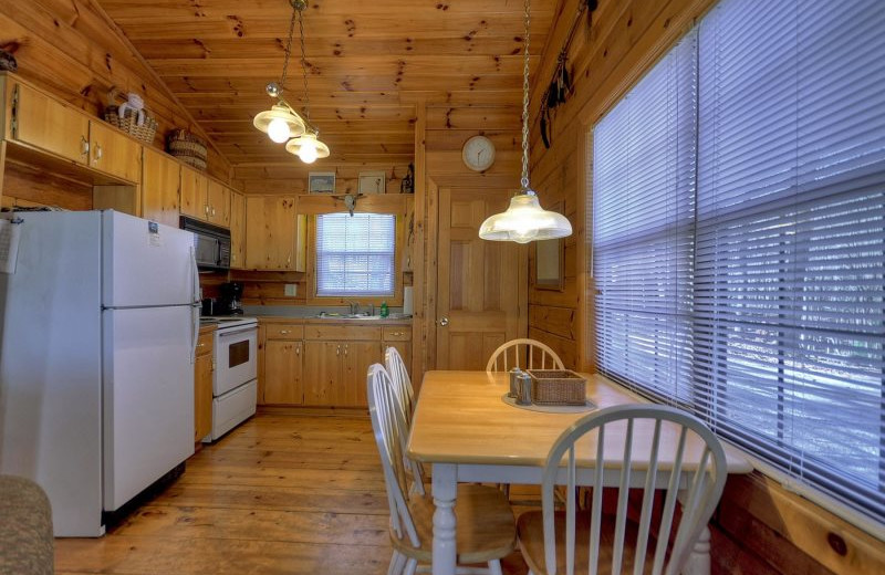 Rental kitchen at North Georgia Vacation Spots.