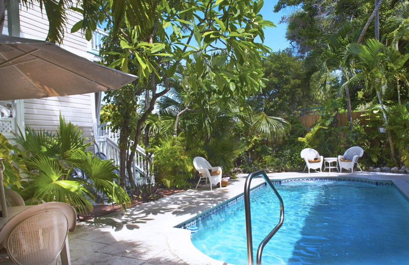 Outdoor pool at Coco Plum Inn.