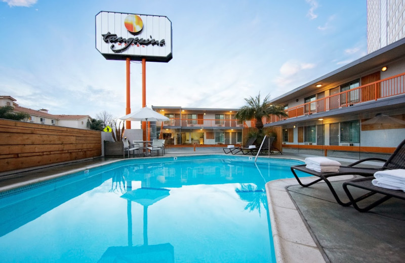 Outdoor pool at Tangerine Hotel.