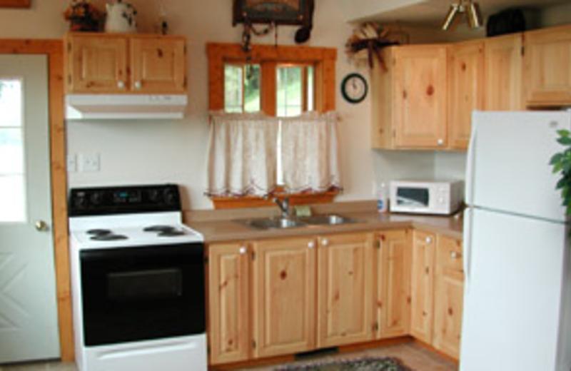 Cabin Kitchen at Cedar Ridge Resort