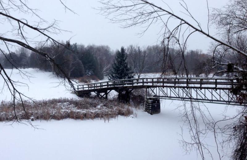 Winter at The Briars.