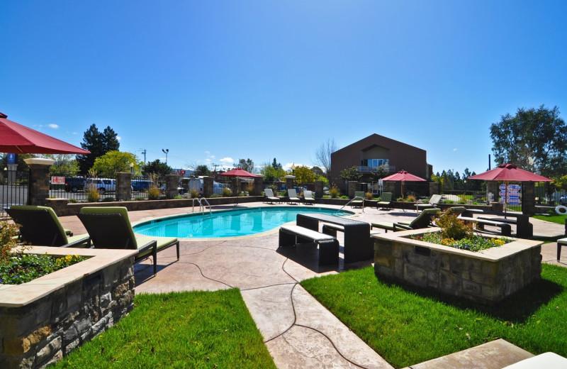 Outdoor pool at Ivy Hotel Napa Valley.
