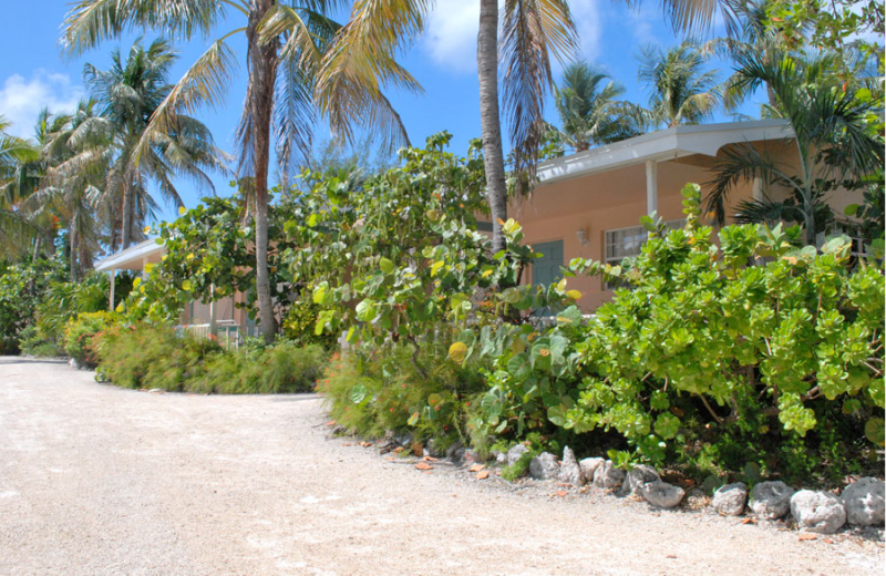 Cottages at Coral Bay Resort.