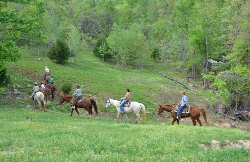 Trail Rides at Horseshoe Canyon Ranch