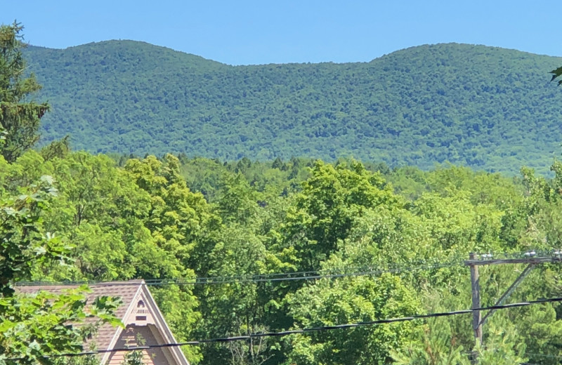 Mountains at Antique Rose Inn.
