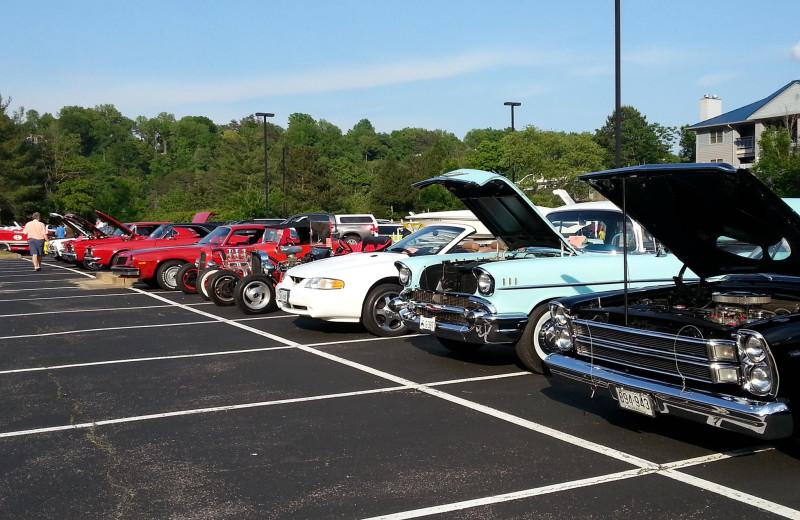 Car show at Jamestown Resort and Marina.