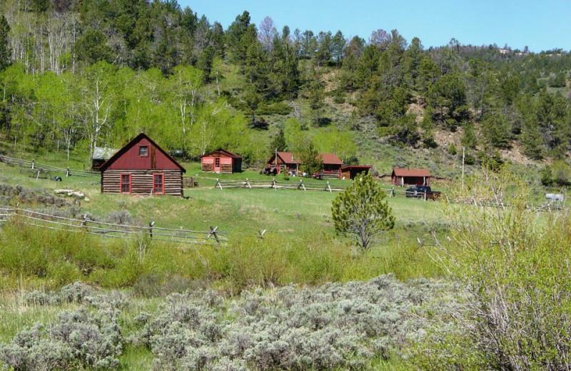 Cabins at The Sugar & Spice Ranch