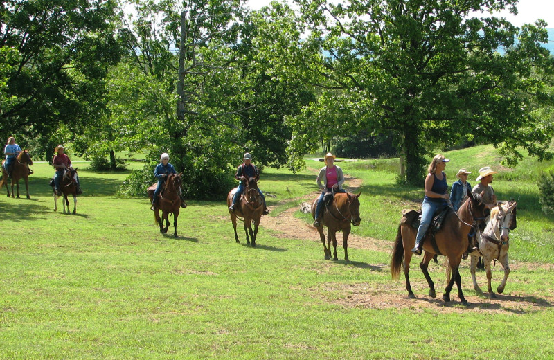 Horse back riding at Mulberry Mountain Lodging & Events.