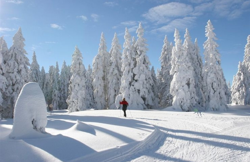 Cross country skiing at Sisters Vacation Rentals.